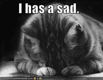 funny-pictures-sad-cat-blackandwhit