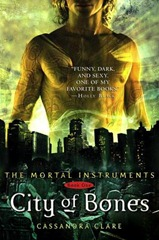 The Mortal Instruments City of Bones book