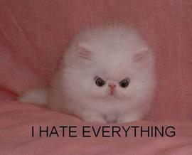 i hate everything