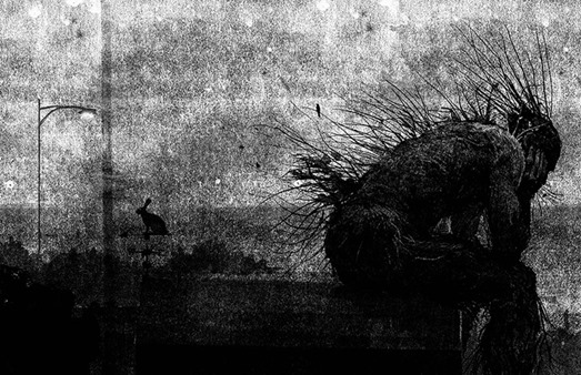 a monster calls illustrationn