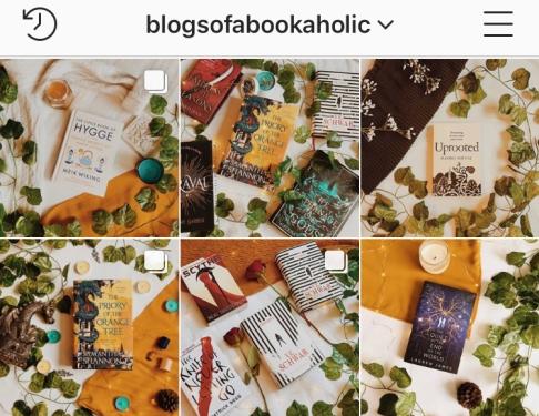 blogsofabookaholic instagram 2